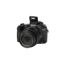 Sony - Cyber-shot DSC-RX10