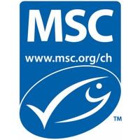 MSC -